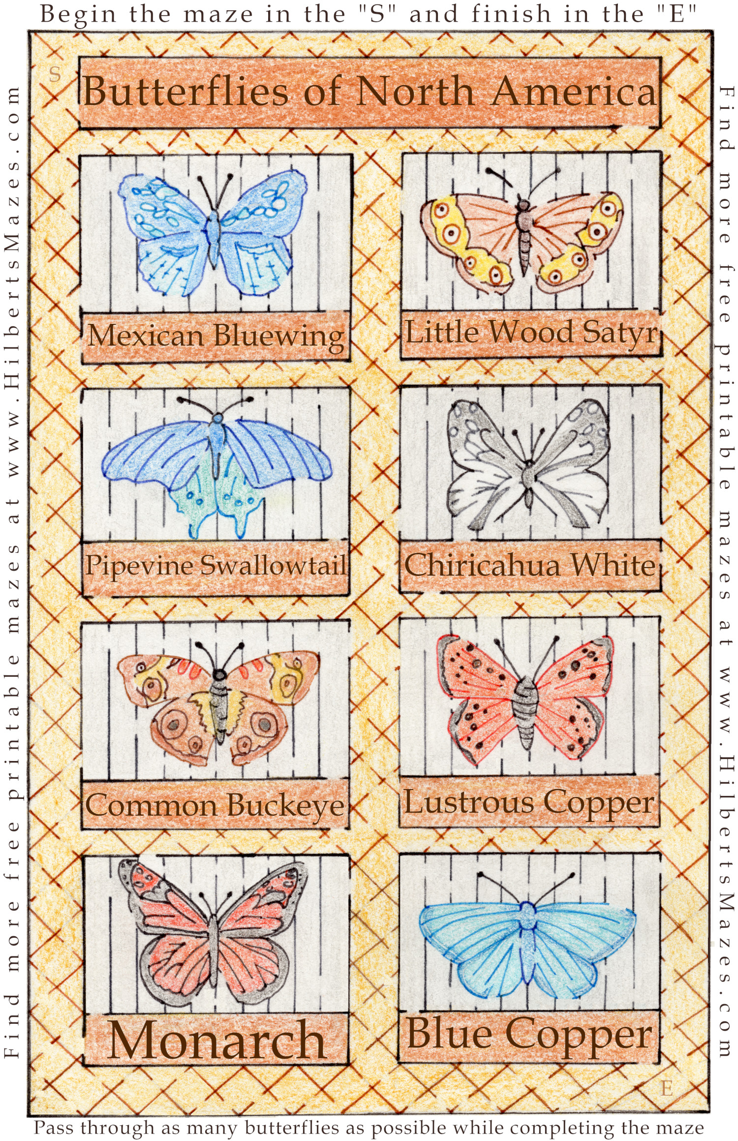 Free Printable Hand Drawn Butterfly Maze and Puzzle. Perfect for family trips or kids activities. Perfect for teachers, day care and school parties. Easily downloadable free printable PDF format. Great Mazes and Games for both kids & adults very challenging but fun.